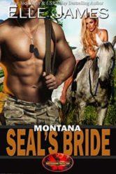 Montana SEAL's Bride